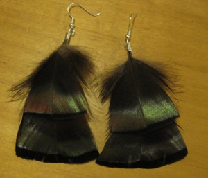 Flights of Fancy Turkey Feather Earrings