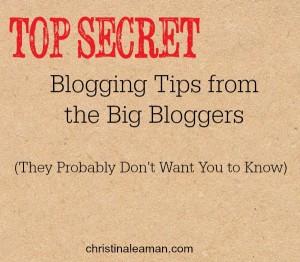 Top Secrets of Big Bloggers Graphic