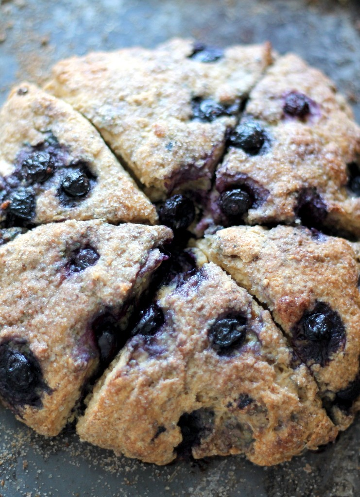 Healthy Blueberry Greek Yogurt Scones / Ambitious Kitchen