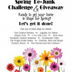 Declutter Your Home! Spring De-Junk Challenge and GIVEAWAY!